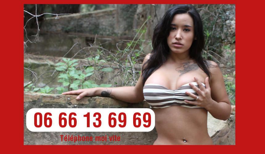 telephone rose de barbara